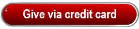 Button with link to Give via credit card