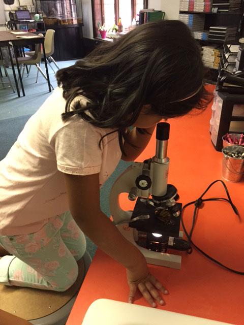 Girl looking through microscope.